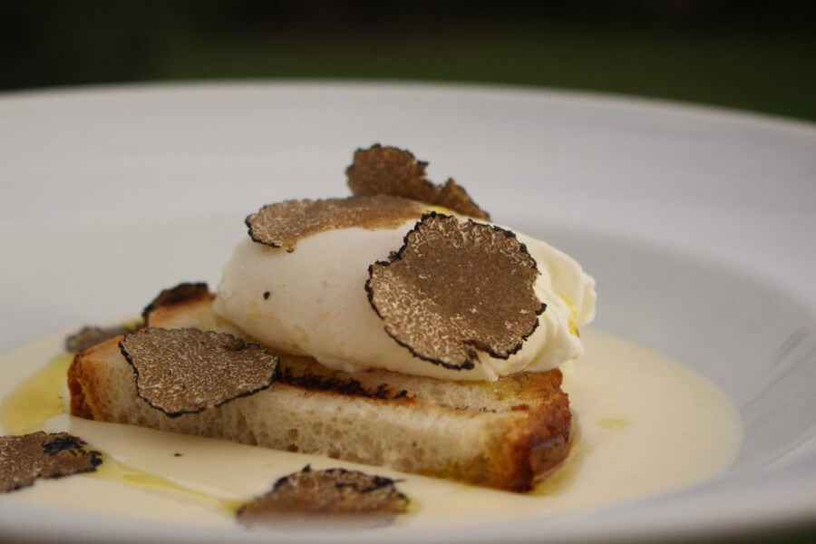 Truffle Hunting Experience in Tuscany