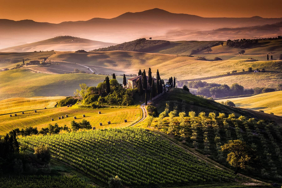 Chianti Private Day Tour