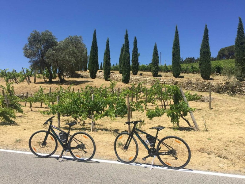 Chianti Classic Cycling Tour