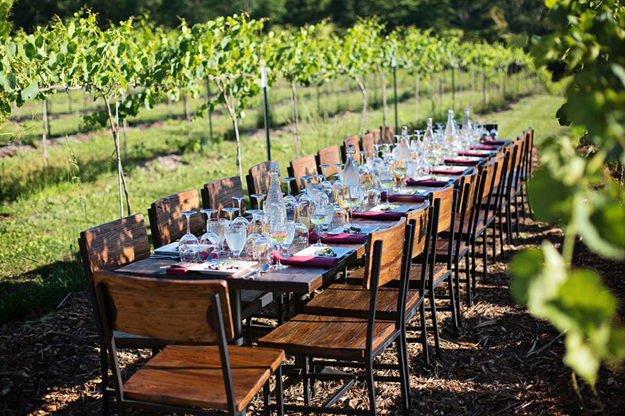 Private Cooking Class & Italian Operas at your Villa