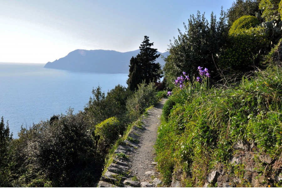Cinque Terre Hiking and Tasting Private Day Tour