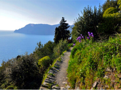 Cinque Terre Hiking & Tasting -Allure-Of-Tuscany