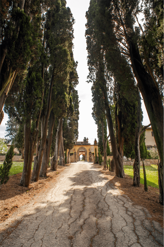 Luxury Villa Florence Driveway- Allure Of Tuscany